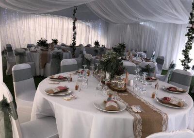 Wedding with Alpacas in Kent